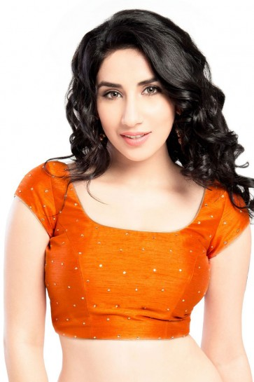 Pretty Orange Dhupion and Silk Blouse